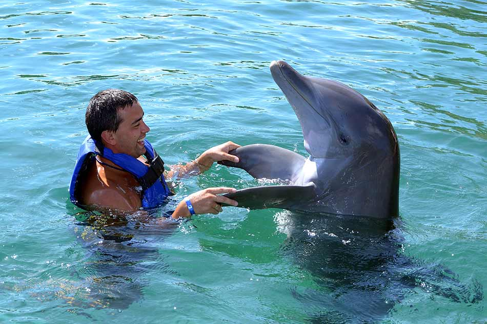 Swim with Dolphins Puerto Aventuras Mexico